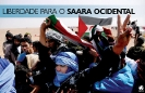 Solidariedade com o Sara Ocidental Não à repressão pelo Reino de Marrocos_1